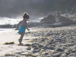 beach-1191091_960_720